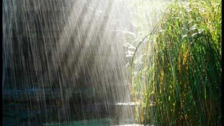 Прогулка под дождём. /Walking in the rain.Chris Spheeris /