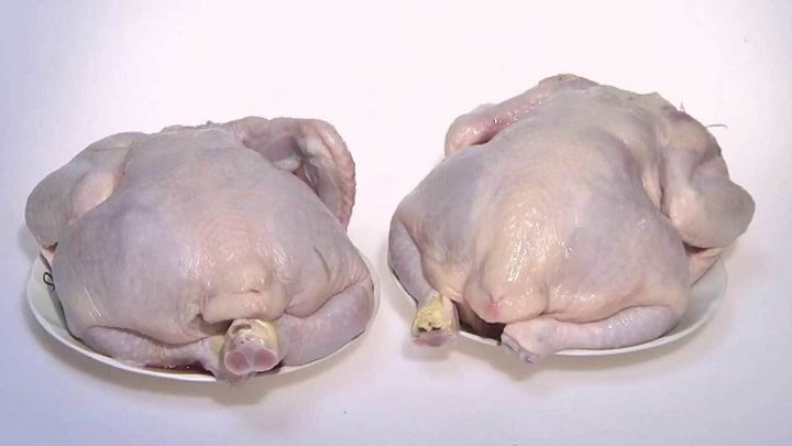 Охлажденная тушка курицы. Контрольная закупка. Выпуск от 30.10.2015 - Контрольная закупка
