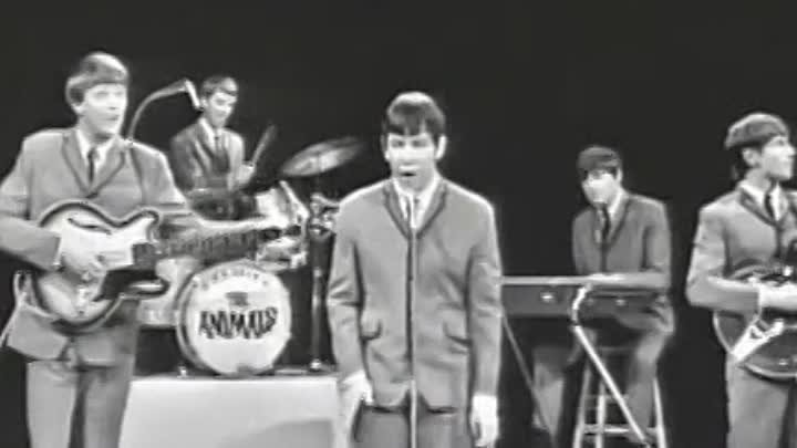 """Animals - House Of The Rising Sun (1964)-musik.klub ROK- ДЖУНГЛИ!!! -""""(official)"""""""