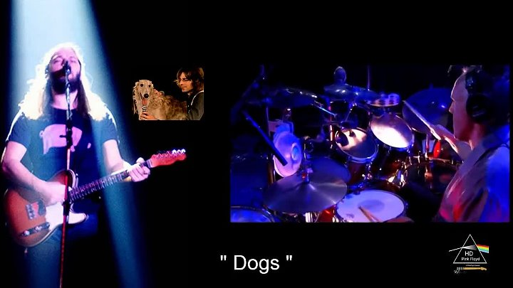 Roger Waters - Pigs on the Wing _ Dogs