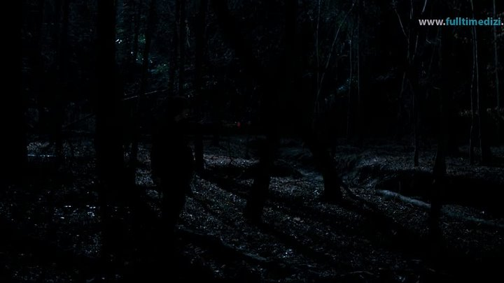 Stranger.Things.S01E06.Chapter.Six.The.Monster.720p.NF.WEBRip.DD5.1.x264-NTb (1)