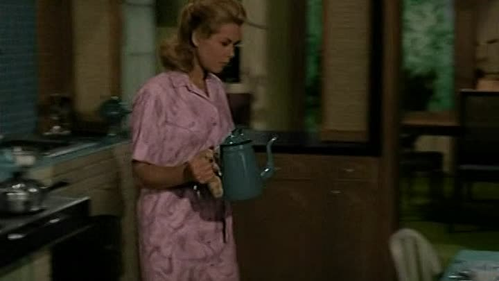 Bewitched.1964.S01E06.Le.protege.de.Samantha.FRENCH.DVDRiP.XViD-bobbosh-www.Sokrostream.com