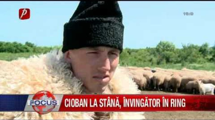Cioban la stana, invingator in ringul de box