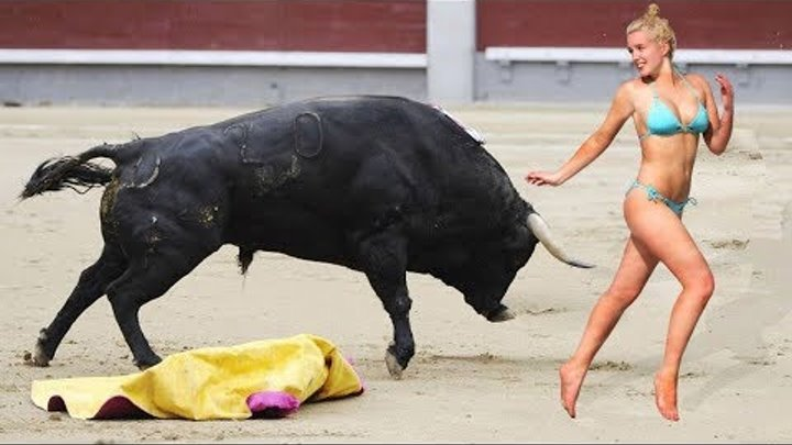 Most Awesome Bull Fight Fails - Top funny videos