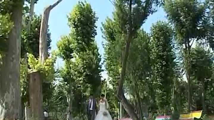 haykakan harsaniq...Armenian Wedding...Армянская свадьба,,, ARAQEL&IVETA