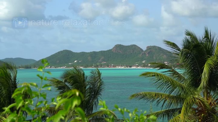 A Day in the Caribbean 4K 3.5 HR Nature Relaxation Ambient Film