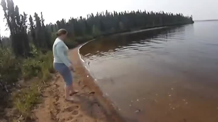 Pike Jumps On Shore