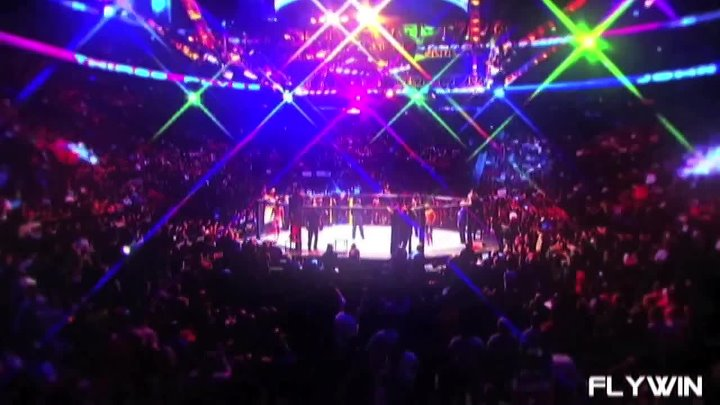 MMA - This Beautiful Sport