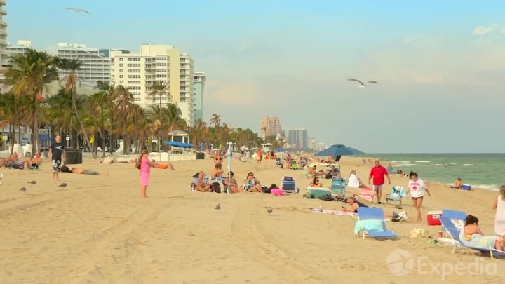 Форт-Лодердейл - Флорида - Guide to Fort Lauderdale - Sightseeing - Florida