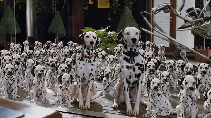 Image result for 101 dalmatians live action