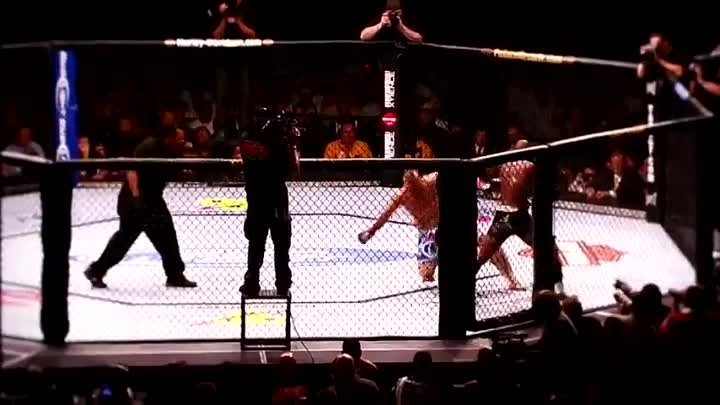 The Beauty Of MMA