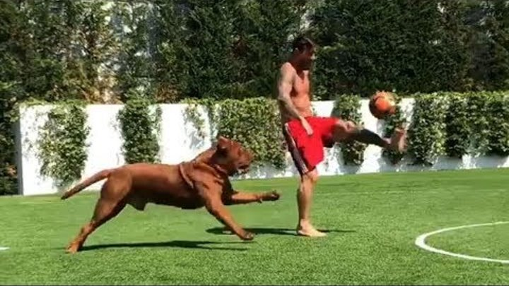 Lionel Messi Plays Football With His Dog 2018 ⚽ 🐶🌞