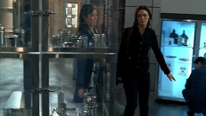 bones.s04e14.dvdrip.rus(tv3).eng_NewStudio.TV