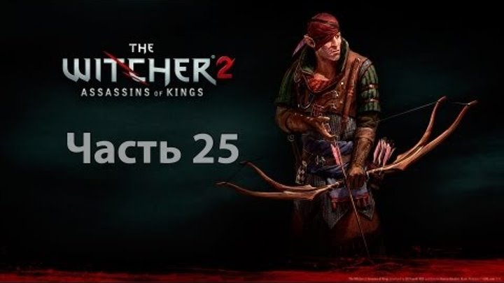 Let's play The Witcher 2: Assassins of Kins Enhanced Edition - Часть 25