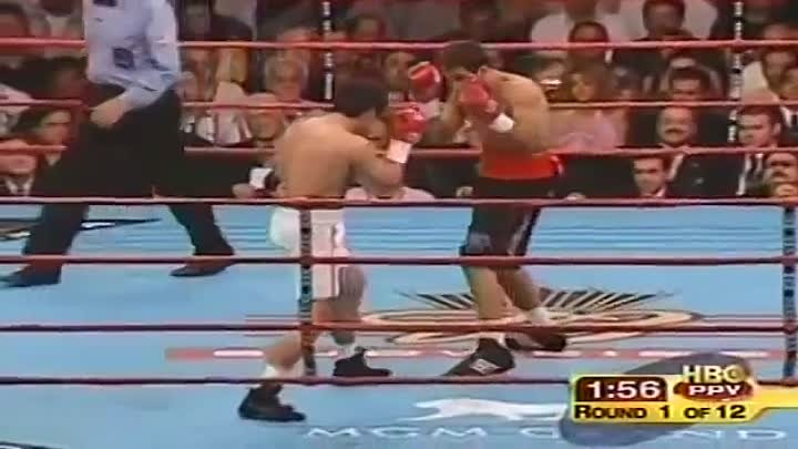 Oscar De La Hoya vs Felix Sturm - Full fight 2004