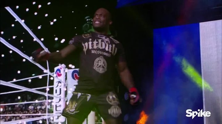 Bellator MMA_ Best of 2015