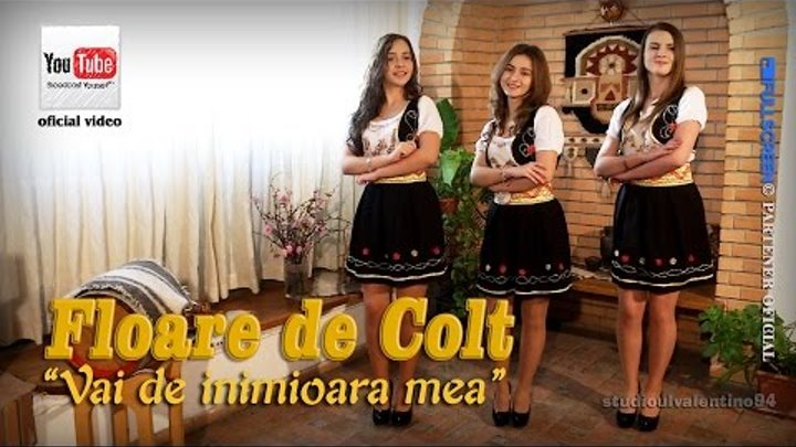 FLOARE de COLT . Vai de inimioara mea (oficial video)