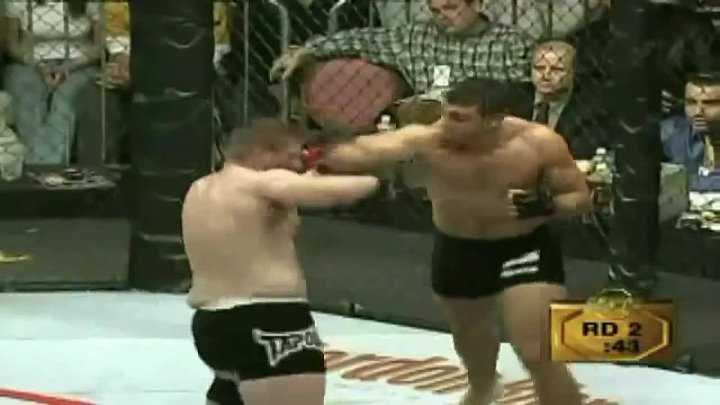TOP Powerful Strikes Landed in UFC History!