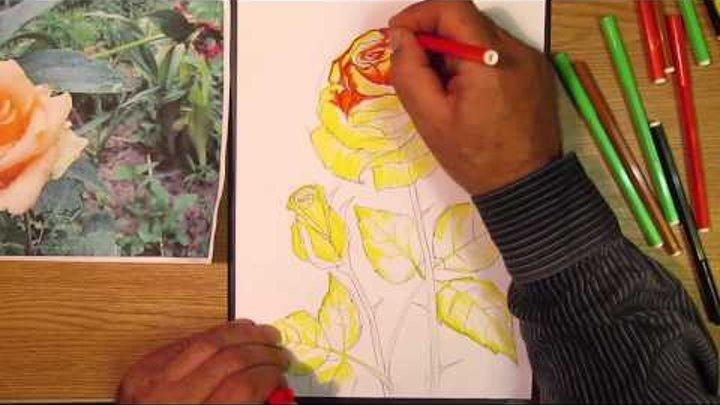 видео как художник рисует розу на русском заглот