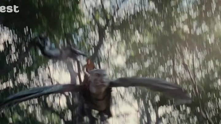 Eragon.2006.720p.Cima4Up.Tv