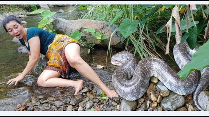 Survival skills Find big snake in water wild&boiled snake in clay for food cooking eating delicious