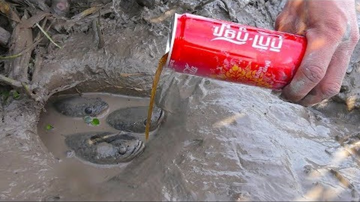 New Method Of Catching Fish From Deep Hole Using Coca Cola By Smart Man
