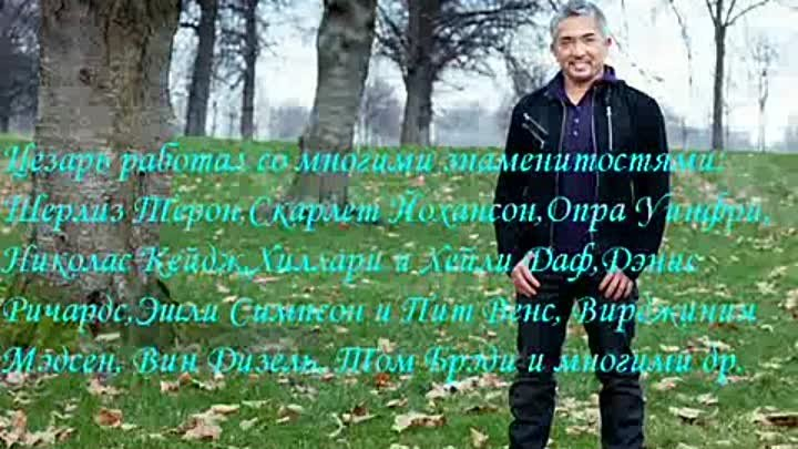 The Truth about Cesar Millan