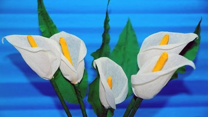 Easy Flowers Making How To Make Calla Lily Flower From Crepe Paper Craft Tutorial Julia Diy