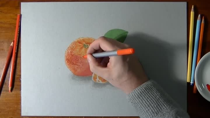 How I draw a mandarin orange - realistic drawing
