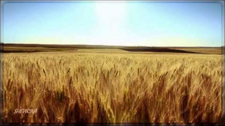 Eva Cassidy - Fields of gold (Sting cover)