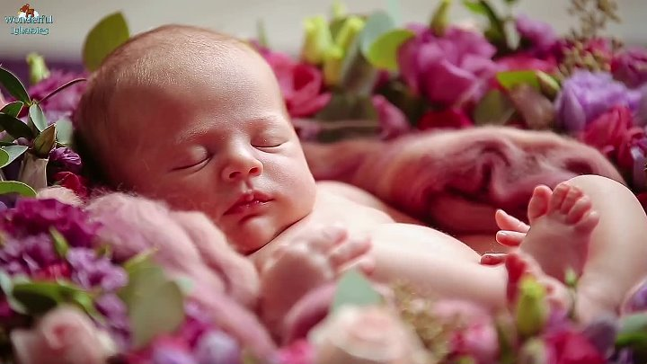 1 Hour Soft Relaxing Baby Sleep Music Collection ♥ Brahms Mozart Beethoven Lullaby ♫ Good Night