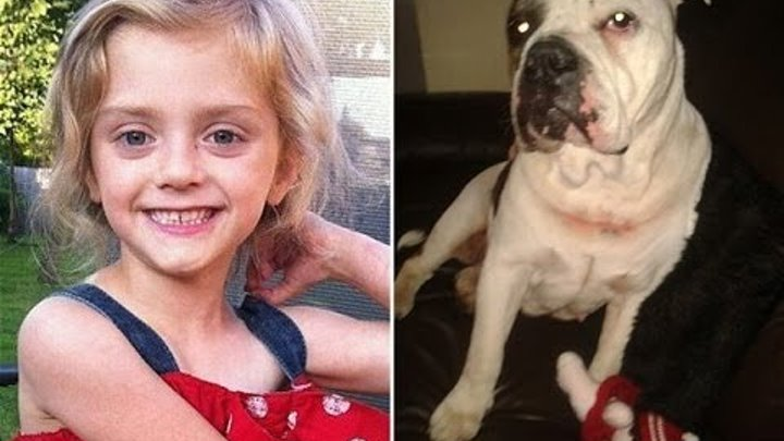 Dog Attack: Girl Was Killed By 'Stray' Bulldog / Lexi Branson And Mulan, The Dog That Killed Her