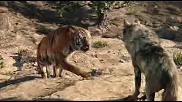 The Jungle Book 2016 Shere Khan Kills Akela_low.mp4