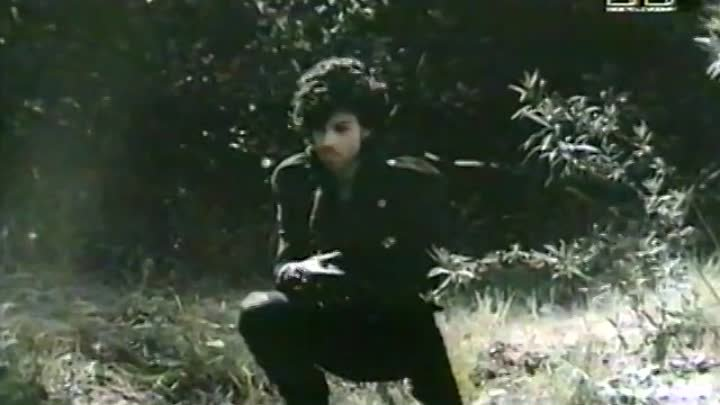 Prince - When Doves Cry (MTV EUROPE 1985)
