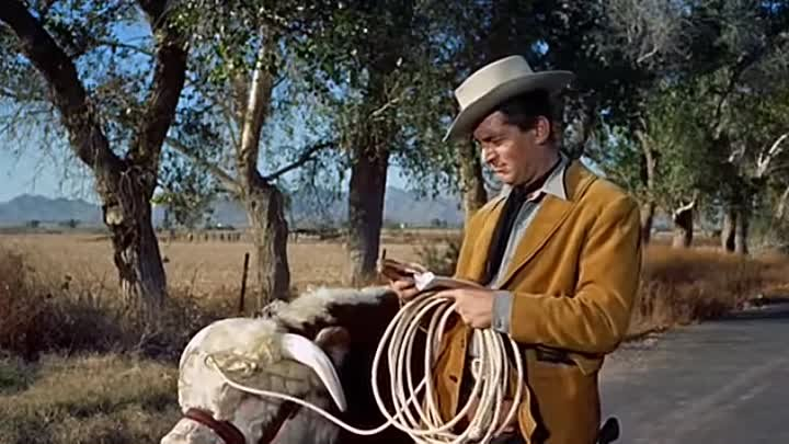 Pardners (1956) - Dean Martin, Jerry Lewis, Lori Nelson