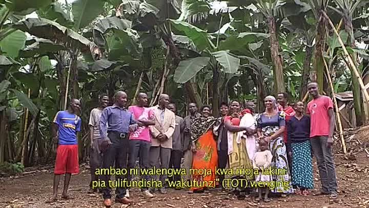 Innovation in banana cropping systems.mp4
