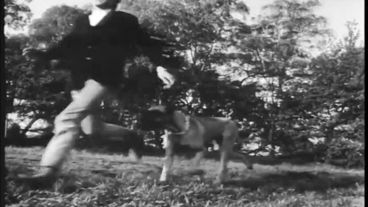 (5) NEW - You Got What It Takes Dave Clark Five Promo HD Widescreen {Stereo} - YouTube