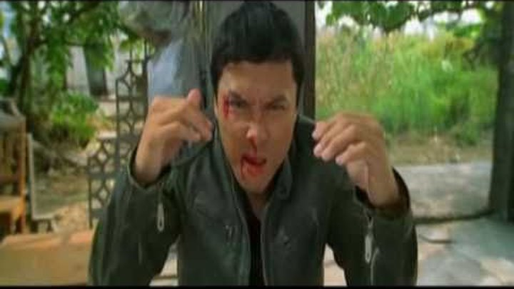 Heroes of Martial Arts - donnie yen (Flash Point)