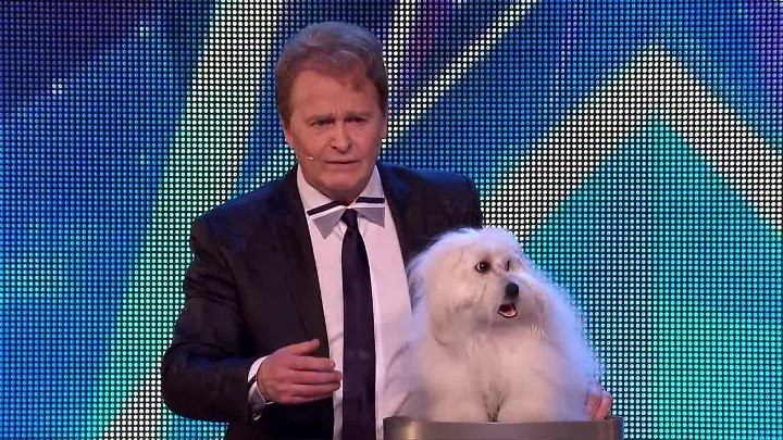 Marc Métral and his talking dog Wendy wow the judges - Britain's Got Talent 2015