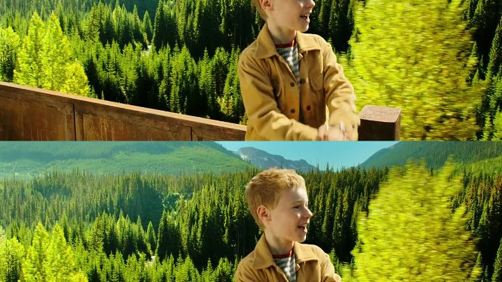 The.Young.and.Prodigious.T.S.Spivet.2013.1080p.3D.Dual.DCRG en