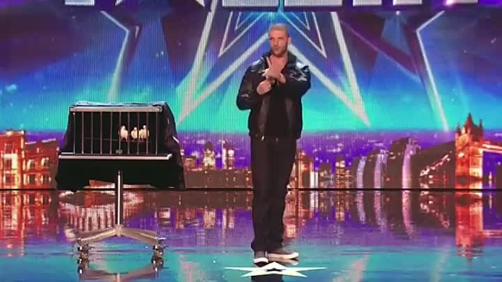 Darcy Oake's jaw-dropping dove illusions - Britain's Got Talent 2014