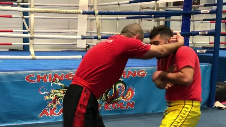 Chinese Boxing & Kung Fu Defense techniques