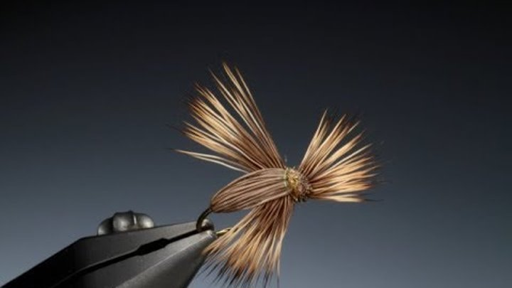 Tying the Screaming Banshee with Barry Ord Clarke