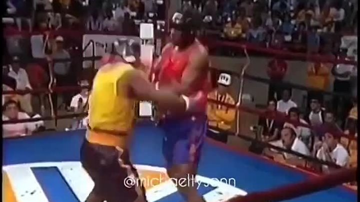 showtime_fights
