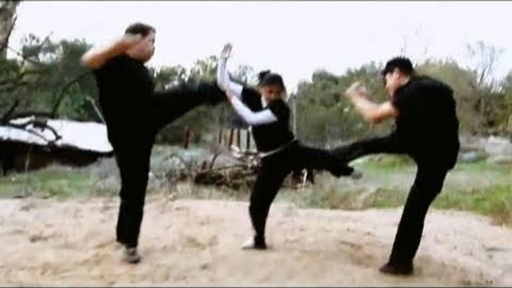 Kung Fu Girl vs 2 Guys Fight Scene (Tekken / Dead or Alive Style)