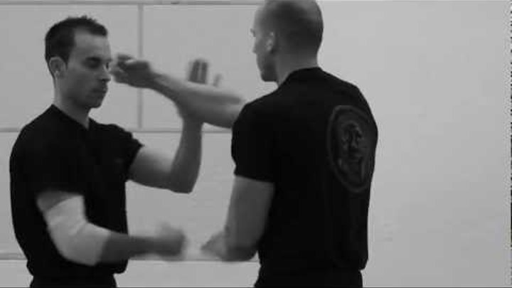 Ip Ching + Leung Ting Wing Chun Kung Fu - Ip Man Stil - training - fight - lat sao - kuo sao - demo