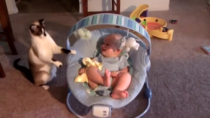 Baby laughs while cat plays with his toys