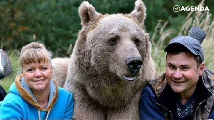 В русской семье живёт медведь (The bear lives in Russian family)