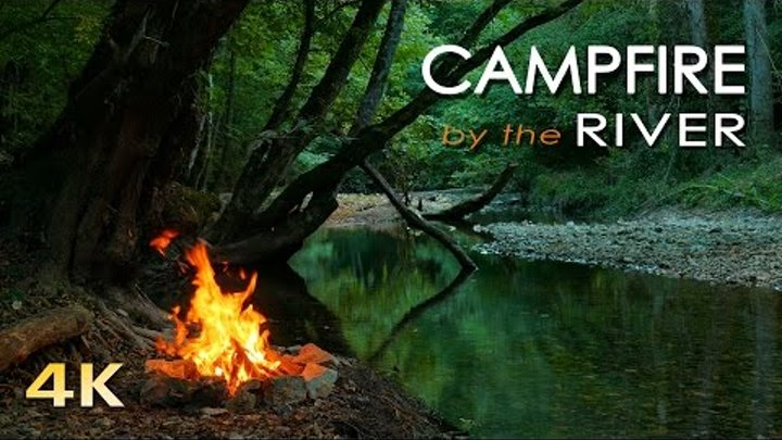 4K Campfire by the River - Relaxing Natural Sounds - Robin Birdsong - UHD Nature Video