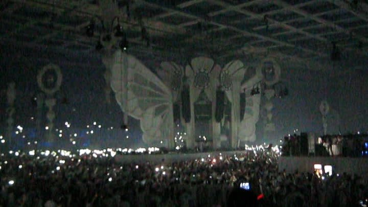 Sensation. Wicked Wonderland 5